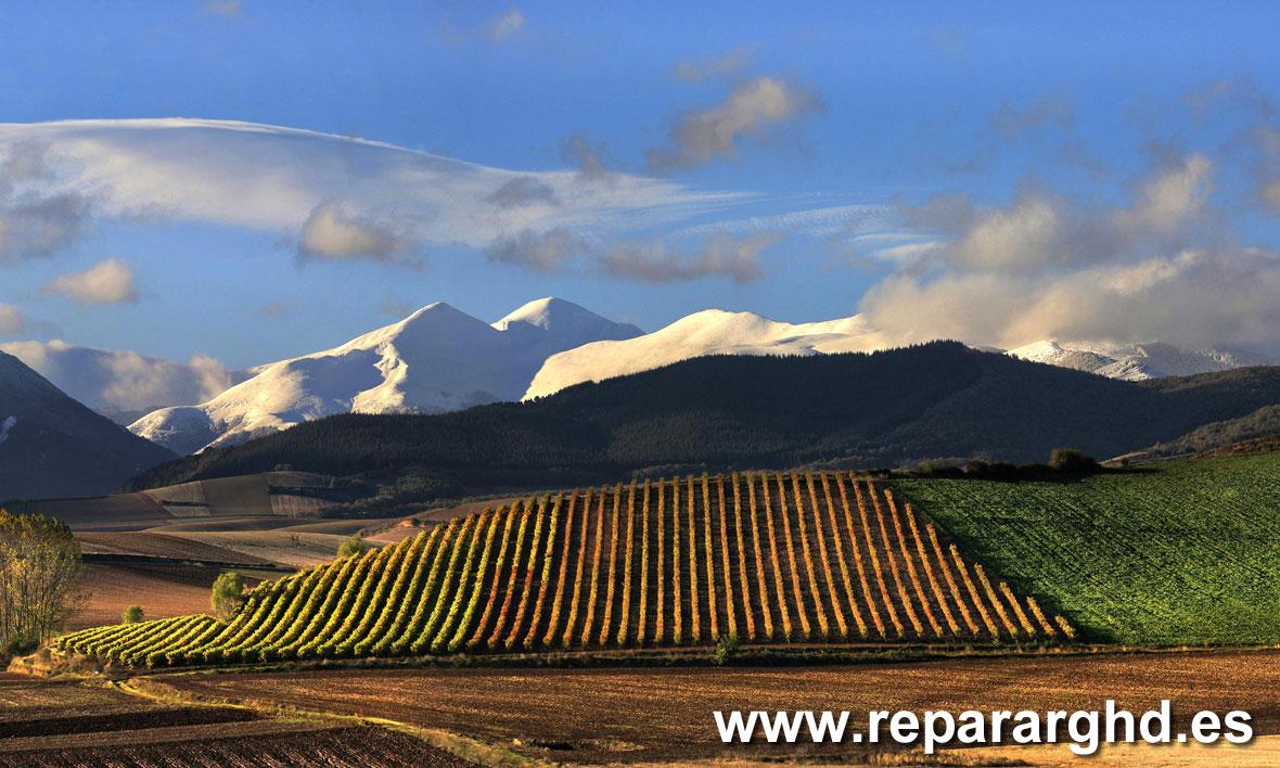 Técnico GHD en La Rioja